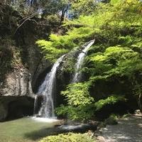 月待の滝 もみじ苑の写真