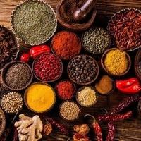 インド・ネパール料理 クマリの写真