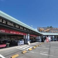 徳造丸 海鮮家 八幡野店の写真
