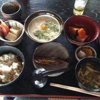 川原寺 花つばきの写真