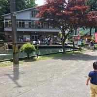 吉野観光の写真
