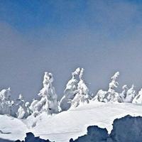 レストラン山頂の写真