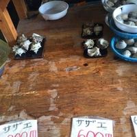 竹崎海産の写真