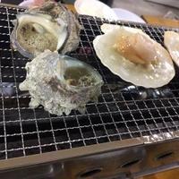 房州きよっぱち 海鮮地魚食堂 清八丸の写真