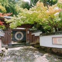 梅の花 太宰府別荘自然庵の写真