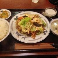 四川料理 食為鮮 麹町店の写真