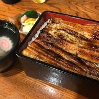 川魚料理 魚玉の写真