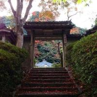 大願寺の写真