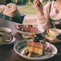 亜熱帯茶屋の写真