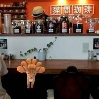 猫間珈琲の写真