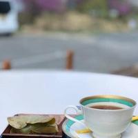 長野山ロッジ 天空カフェの写真