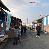 岡田浦漁港の写真