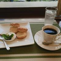珈琲豆処 こげ茶家の写真