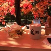 猿座カフェの写真
