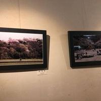 花杏豆 鴨島店の写真