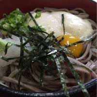 米太の写真