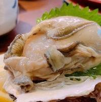 寿司みなと 旗ヶ崎店の写真