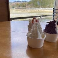橋本牧場 イタリアンジェラート アイス工房の写真