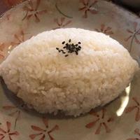 風木野陶の写真