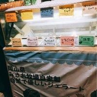 ミルク工房 ジェラテリアMISAO 本店の写真