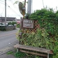 音楽食堂 FAMILY TREEの写真