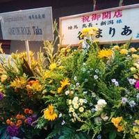 練馬 鳥長 新潟の写真