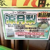 のんきや 入江店の写真
