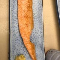 お魚天国の写真