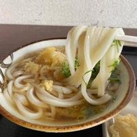 丸池製麺所の写真