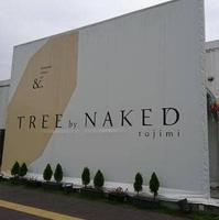 TREE by NAKED tajimiの写真