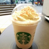 スターバックスコーヒー マリエとやま店の写真