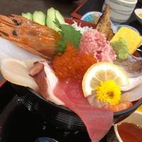 魚魚魚の写真