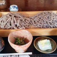 そば処 壽庵の写真