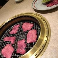 京城園 本店の写真