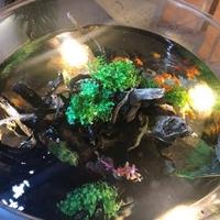 ウェルビー レストラン 福岡支店の写真