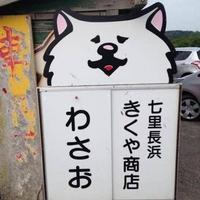 菊谷商店の写真