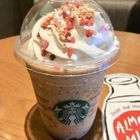スターバックスコーヒー イオンモール鳥取北店の写真