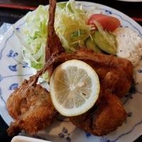 昭和水産トロール市の写真