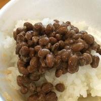 天然わら納豆 ふくふくの写真