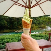 池川茶園の写真
