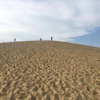 砂丘会館の写真