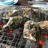 海鮮料理 磯の写真