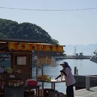 中浦食品神社前売店の写真