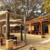 Honey Garden Cafeの写真