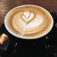 グラック コーヒー スポットの写真