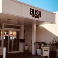BUSHの写真