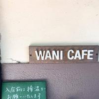 高島ワニカフェの写真