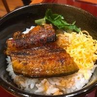 和食味処 かかしの写真