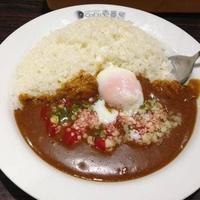 カレーハウス CoCo壱番屋 東急鷺沼駅前通店の写真