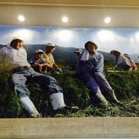 農家レストランたわわの写真